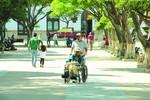 Registran a 443 nuevas personas  con discapacidad