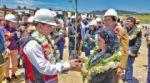 Buscan reforestar Sucre con 8.000 árboles nativos