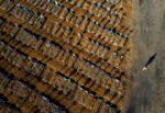 Brasil supera las 120 mil muertes de covid-19