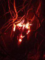 Incendios se reactivan en Monteagudo; voluntarios piden ayuda