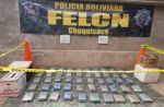 Felcn decomisa más de 50 mil kilos de marihuana en una casa de Monteagudo