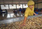 Bolivia registra un superávit comercial de $us 339 millones en el primer trimestre