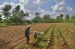 Banco Mundial: Repunte global desigual deja atrás a países pobres