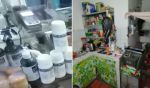Aprehenden a hombre acusado de abrir farmacia precaria, manipular medicinas y testear covid-19