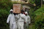 Balance mundial: La pandemia de coronavirus deja cerca de 4 millones de muertos