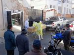 Bolivia reportó la cifra más baja de muertos por covid-19 del año