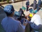 """""""Vacunatón"""", la campaña que distribuirá primeras dosis y víveres a familias de Sucre"""
