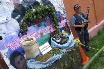 Destruyen una tonelada de marihuana en Aiquile