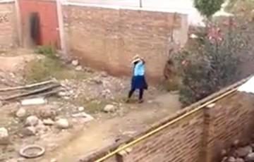 Indignación por maltrato animal en Cochabamba