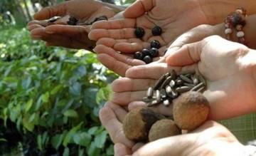 "Arranca la Cumbre Agropecuaria ""Sembrando Bolivia"""