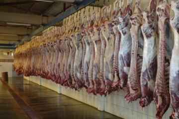 En Sucre, negocio de la carne deja utilidad de hasta Bs 6.700