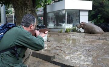 Georgia guarda duelo por las víctimas de las inundaciones en Tiflis