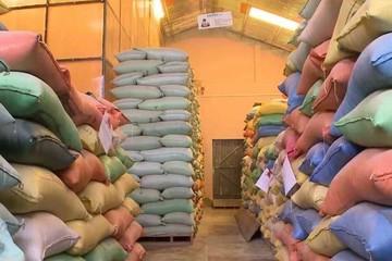 Valor de las exportaciones no tradicionales caen 22%