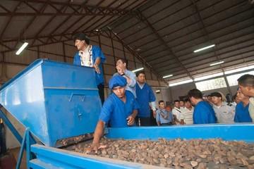 Abren en Pando planta estatal de castaña