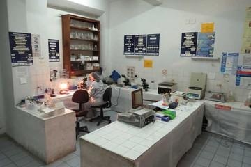 VIH: Detectan el virus en un niño de cuatro años