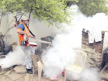 Se confirman 11 casos positivos de chikungunya