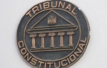 Oposición plantea nuevo memorial al TCP para frenar proceso de referéndum