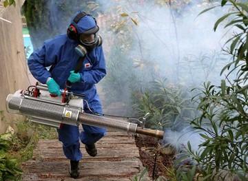 Chikunguña: 9.077 casos  se registraron en el país