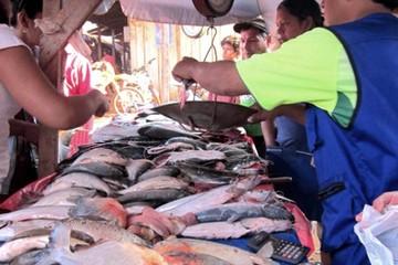 El pescado en la seguridad alimentaria