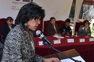TSE convoca a políticos a cumplir con la norma para hacer campañas