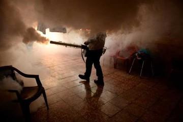 Refuerzan prevención para evitar casos de zika