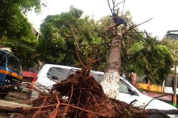 Fuerte temporal causa destrozos en Yacuiba