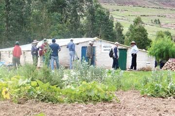 Potolo: Entregan 56 invernaderos hortícolas