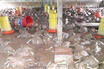 Alerta en Monteagudo por acción de las lluvias