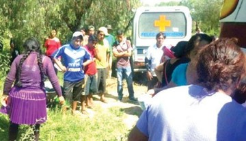 Cochabamba: Perros pitbull  atacan y matan a una mujer