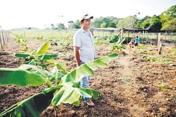 Colombia: Campesinos quieren olvidar la coca