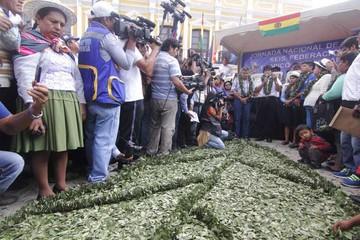 Día del Acullicu: Evo llama a defender la hoja de coca