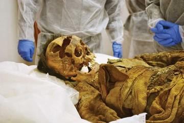 Especialistas estudiarán las momias repatriadas