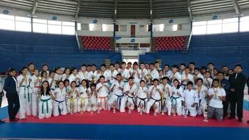 Karate define representantes