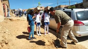 Plantan unos 800 árboles en el Día Internacional de la Madre Tierra