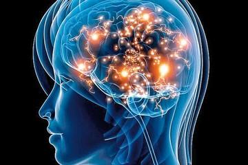 Una parte del cerebro se mantiene vigilante al dormir en otro sitio