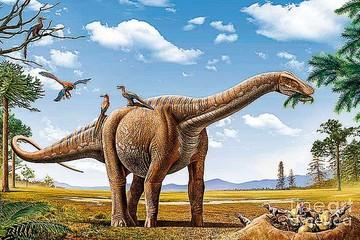 Gigantescos Rapetosaurus adquirían enseguida unas proporciones de adulto
