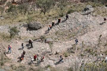 Invitan a caminata para celebrar el Inti Raymi
