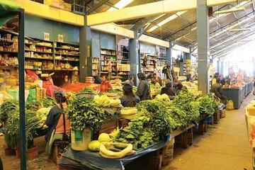 Seguridad alimentaria, un problema todavía latente