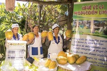 Garantizan continuidad de proyecto en el Río Chico