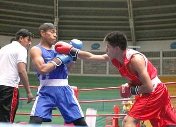 Boxeo elige a sus campeones