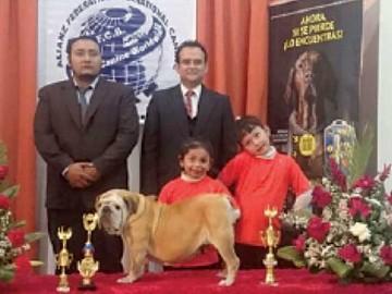 Exposición canina reúne a centenar de ejemplares