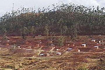 Avasalladores destruyen yacimiento paleontológico
