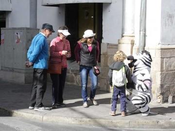Cebras y el 10% de los funcionarios están sin salario