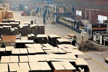 Aseguran productividad, crecimiento y estabilidad de la estatal Cartonbol