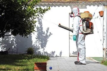 Cuba: Confirman nuevos casos de zika