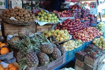 Experto: Falta de apoyo impide satisfacer la demanda de fruta