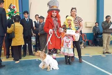 Mascotas y sus dueños sorprenden en concurso