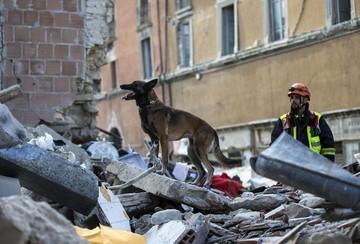 Sube a 73 la cifra de muertos tras terremoto que devastó pueblos del centro de Italia