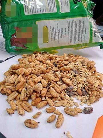 Hallan gorgojo en cereal y trigo de la lactancia