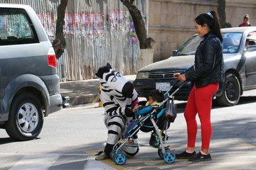 Cebras siguen impagas; no aprueban transferencia
